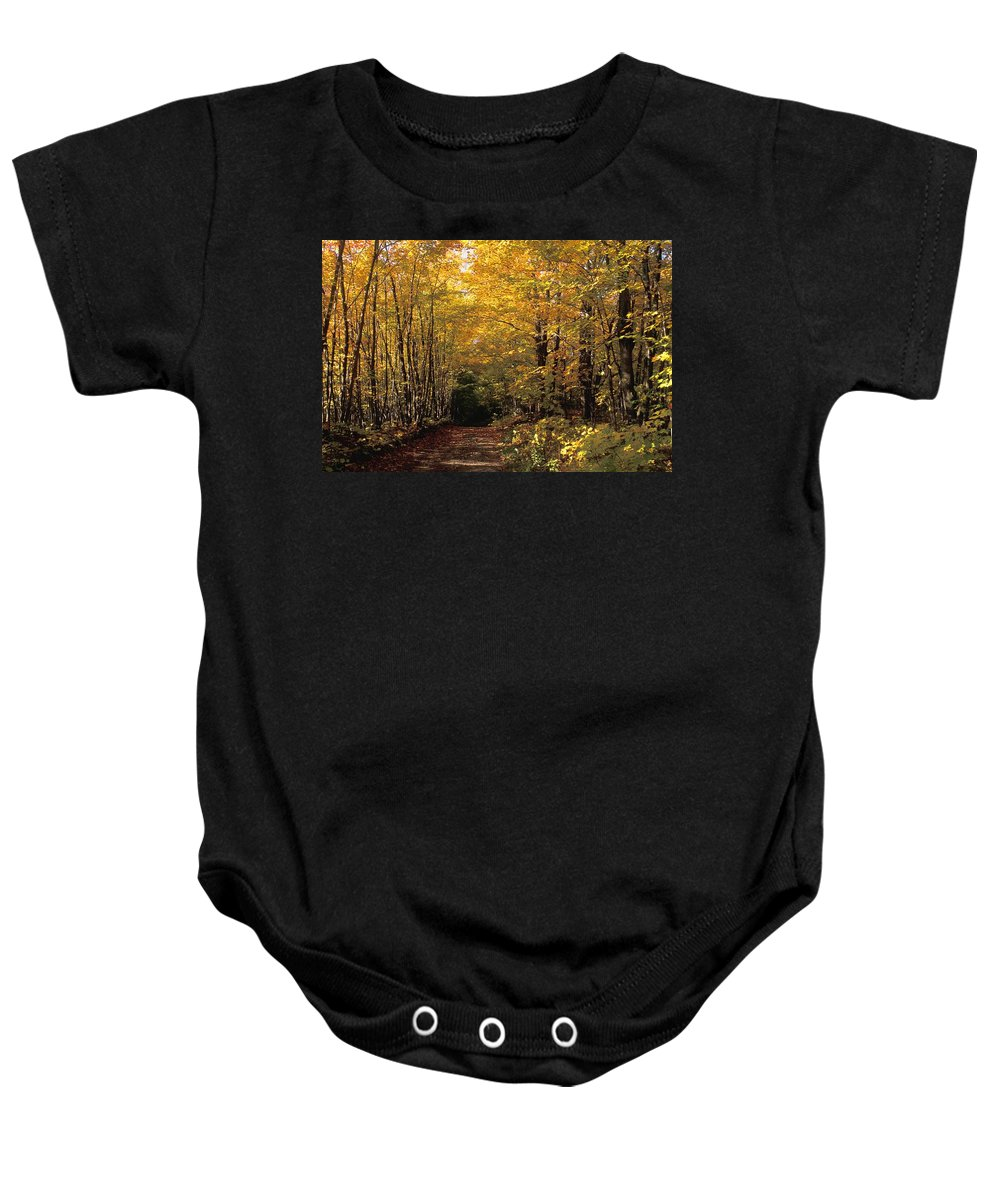 Autumn Colors Baby Onesie featuring the photograph Changing Trees by David Chapman