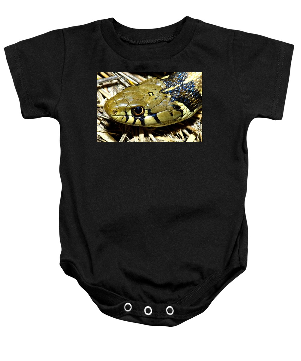 Close-up Baby Onesie featuring the photograph Checkered Garter Snakes Head by Jack Goldfarb