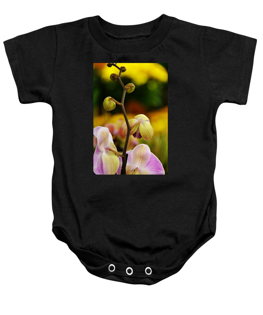 Flowers Baby Onesie featuring the photograph Climbing Slowly by Angelina Vick
