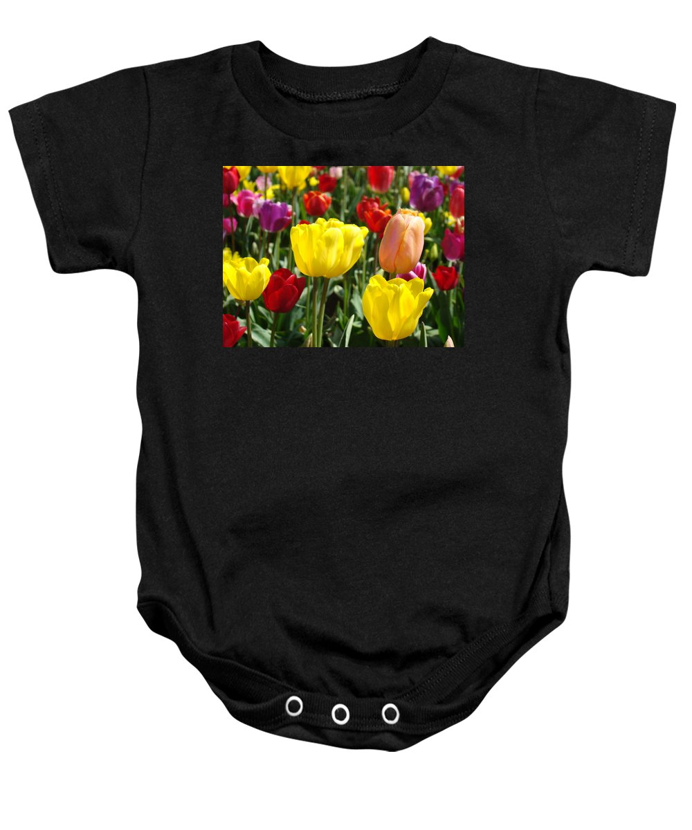 Tulip Baby Onesie featuring the photograph Colorful Bright Tulip Flowers Field Tulips Floral Art Prints by Baslee Troutman