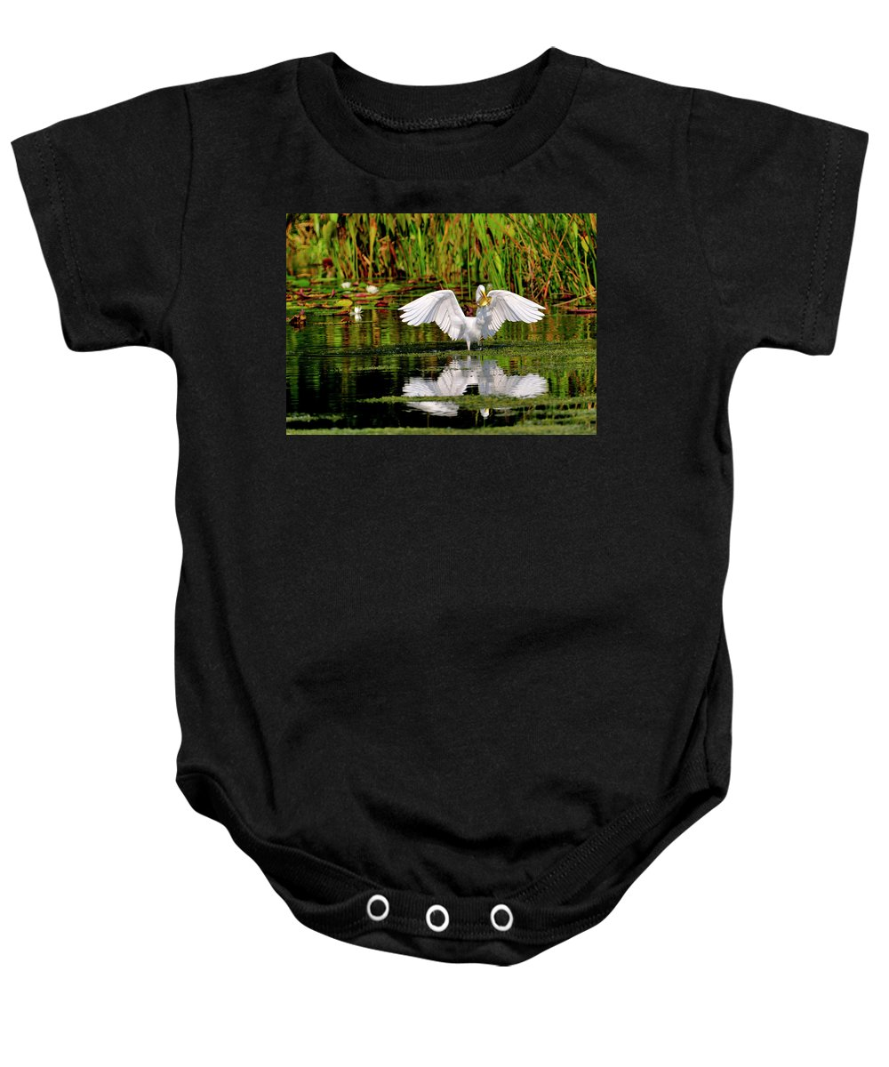 Great White Egret Baby Onesie featuring the photograph Colorful Morning At The Wetlands by Bill Dodsworth