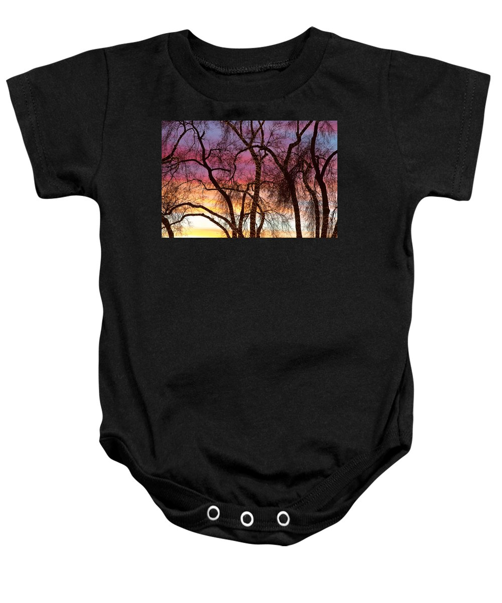 'canvas Art' Baby Onesie featuring the photograph Colorful Silhouetted Trees 37 by James BO Insogna