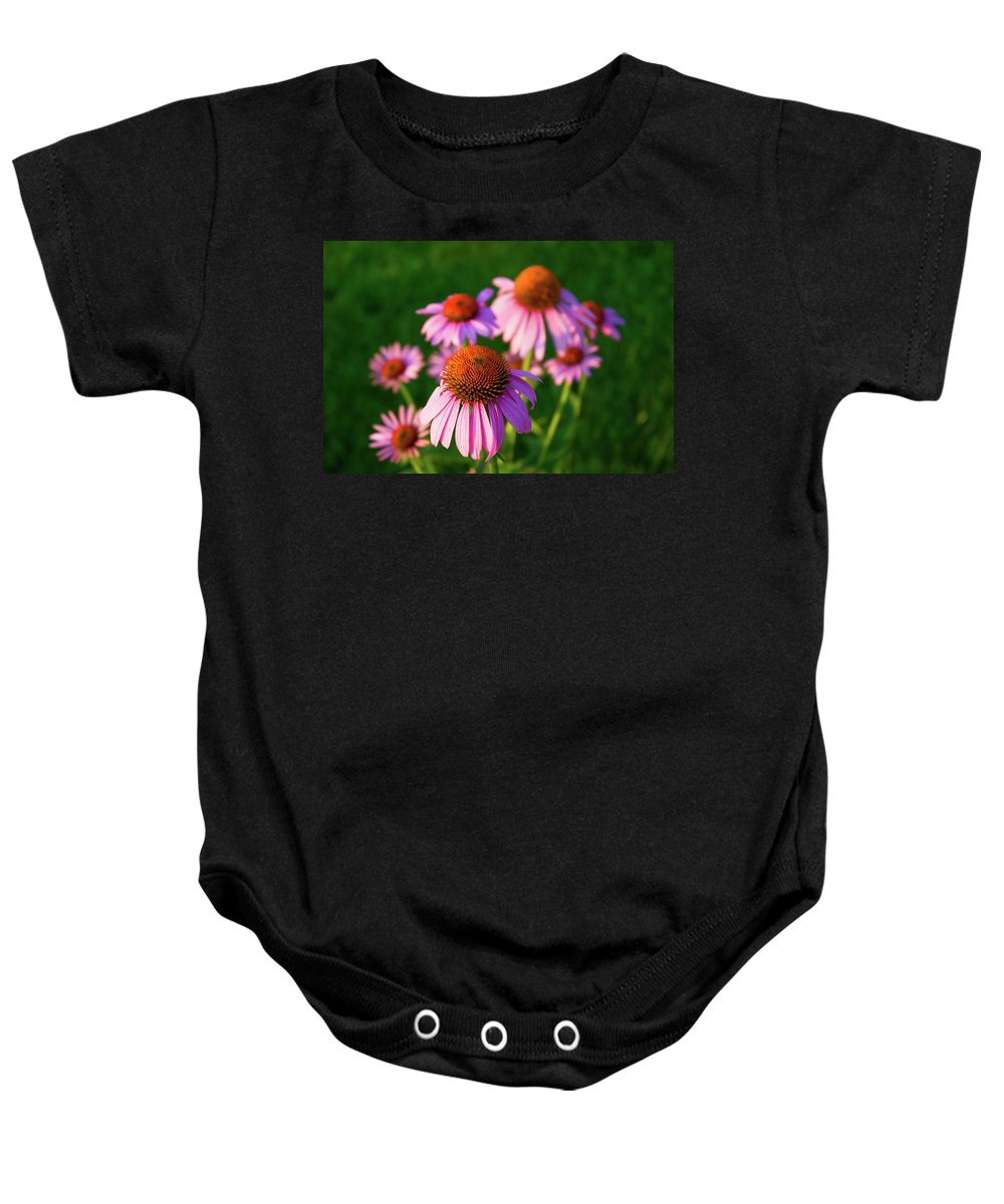 Cone Flower Baby Onesie featuring the photograph Cones by Steve Stuller