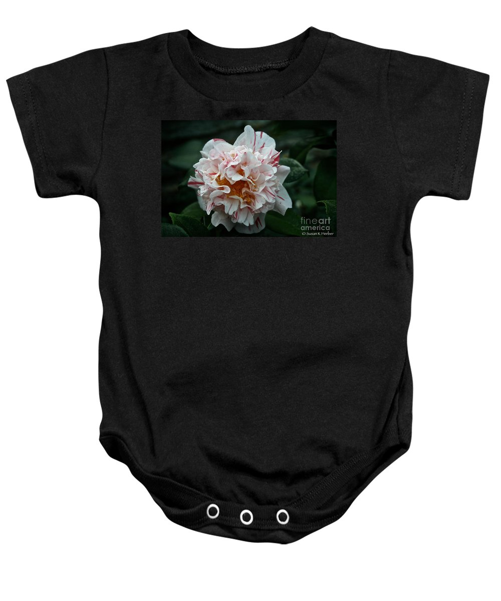 Tropical Plant Baby Onesie featuring the photograph Confetti Floral by Susan Herber
