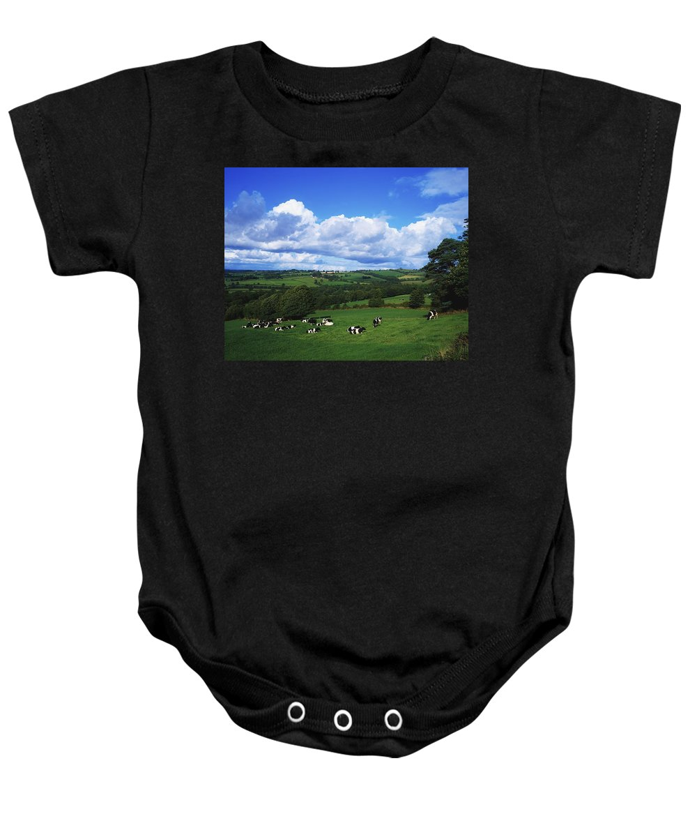 Agriculture Baby Onesie featuring the photograph County Tipperary, Ireland, Dairy Cattle by The Irish Image Collection