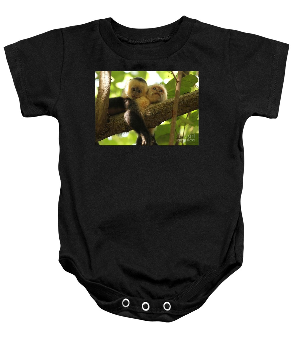 White Faced Monkeys Baby Onesie featuring the photograph Daytime Siesta by Adam Jewell