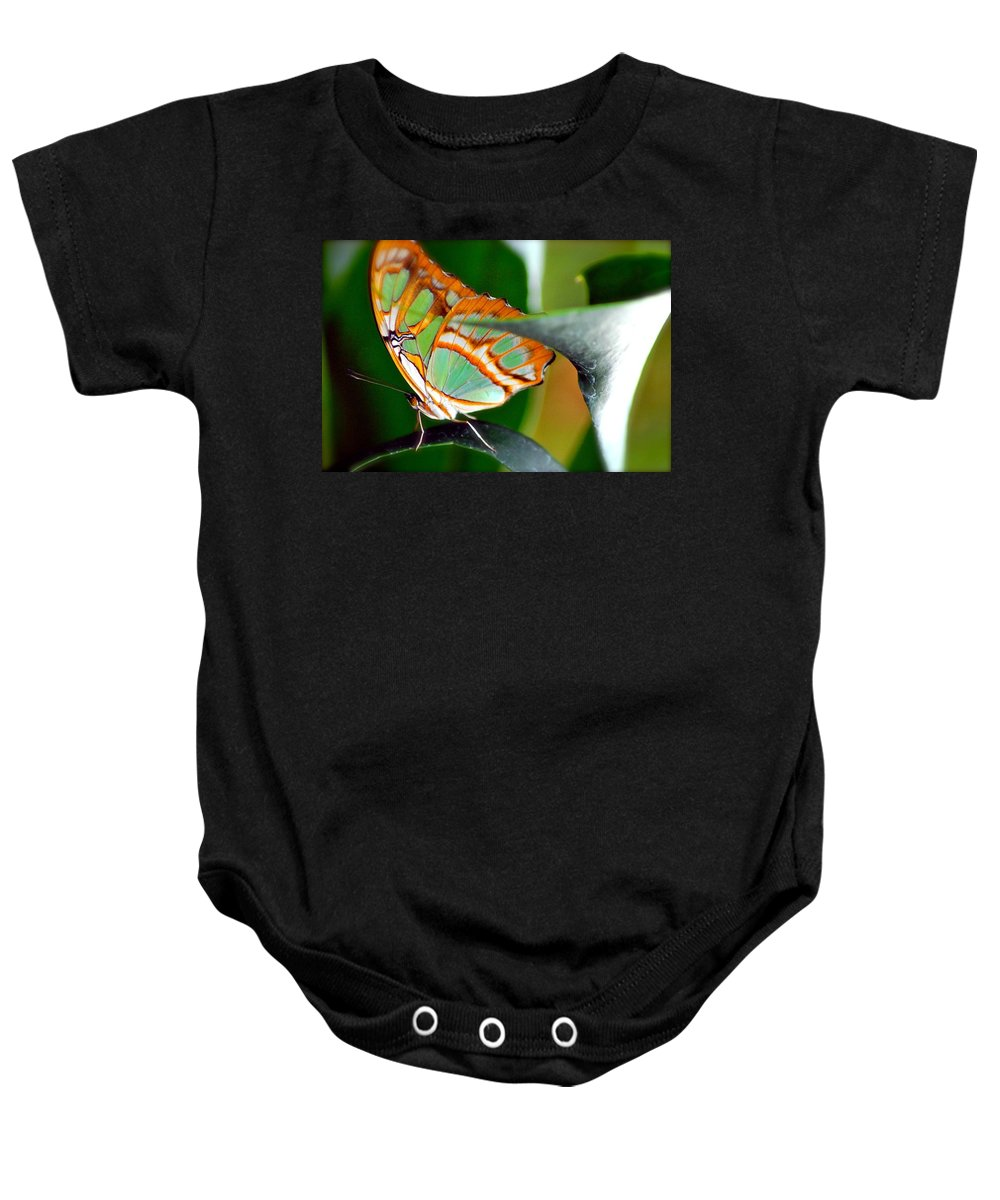Butterfly Baby Onesie featuring the photograph Dido Longwing Butterfly by Peggy Franz