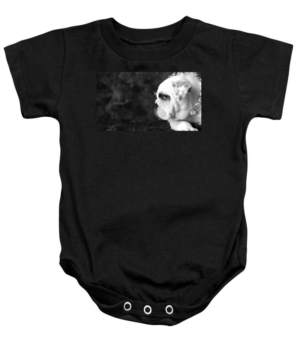 Dog Baby Onesie featuring the photograph Dressed Up Dog by Sumit Mehndiratta