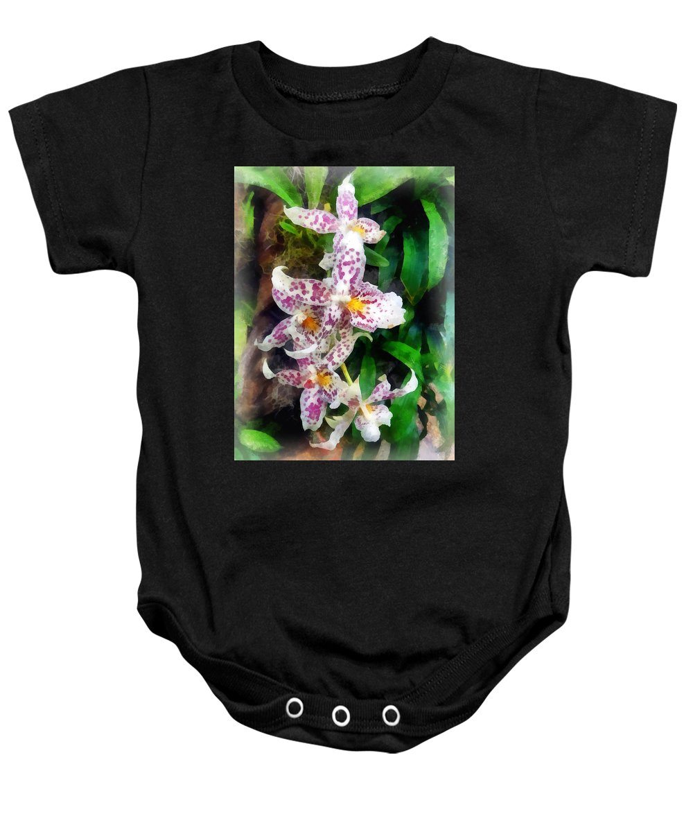 Beallara Baby Onesie featuring the photograph Elegant Beallara Orchid by Susan Savad