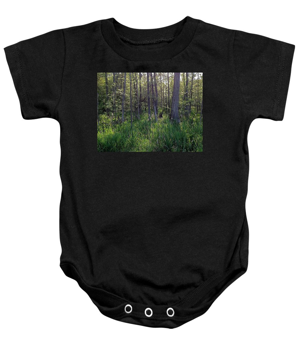 Cattails Baby Onesie featuring the photograph Entry by Joseph Yarbrough