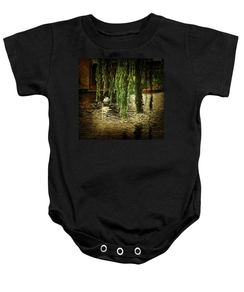 Swans Baby Onesie featuring the photograph Faithfully by Lianne Schneider