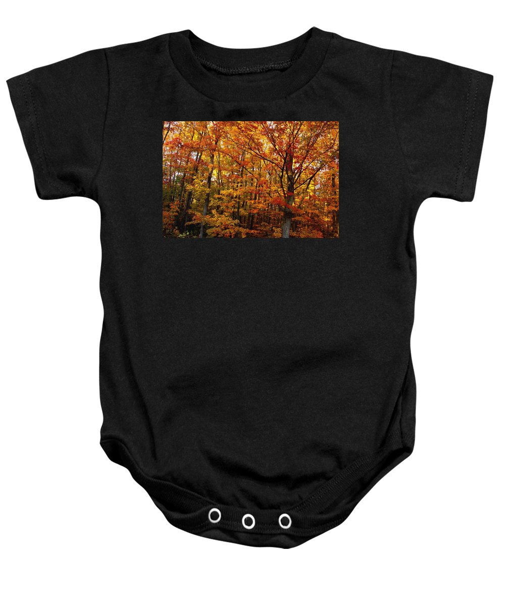 Branches Baby Onesie featuring the photograph Fall Leaves On Trees by David Chapman