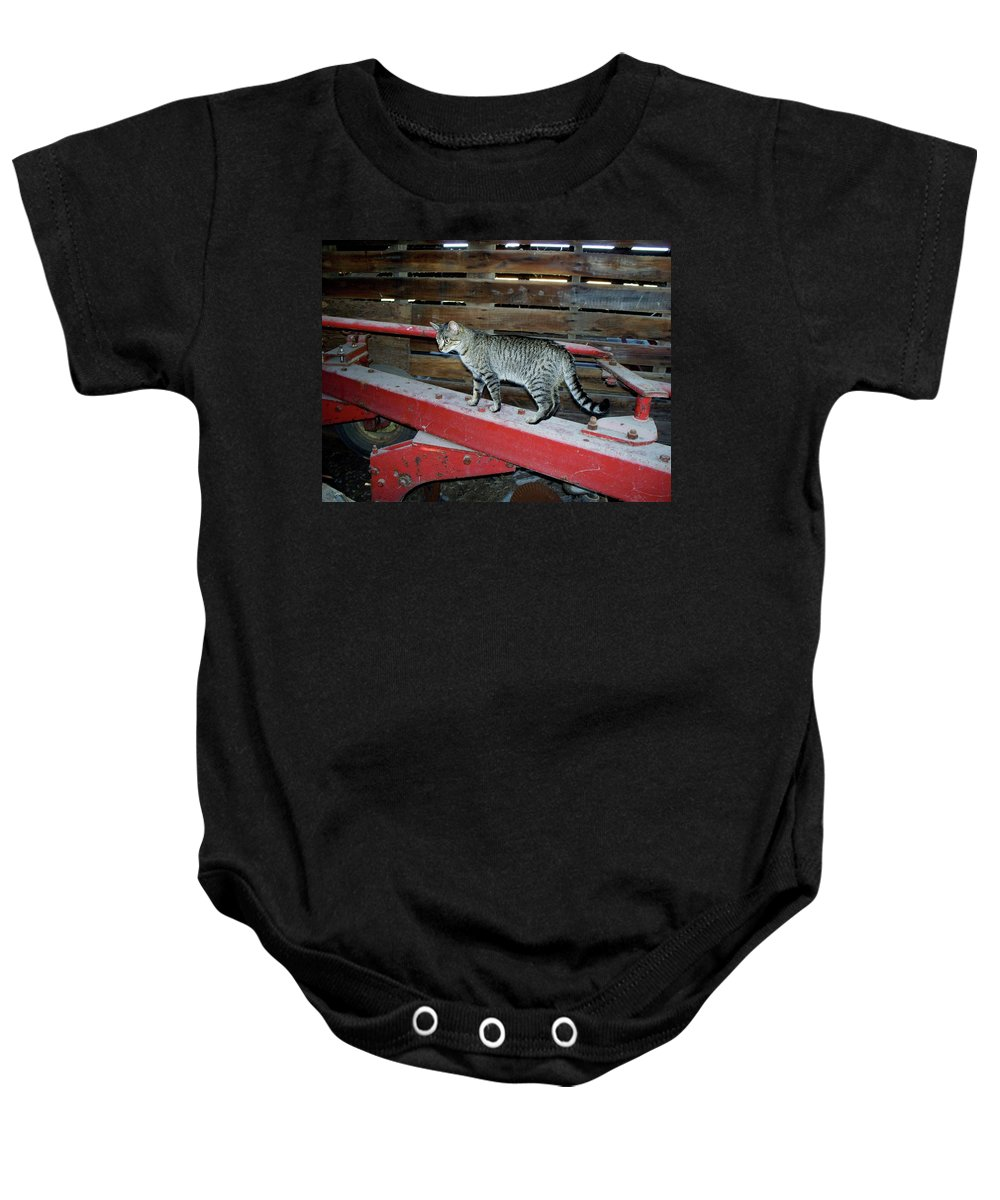 Farm Baby Onesie featuring the photograph Farm Cat by Thomas Woolworth