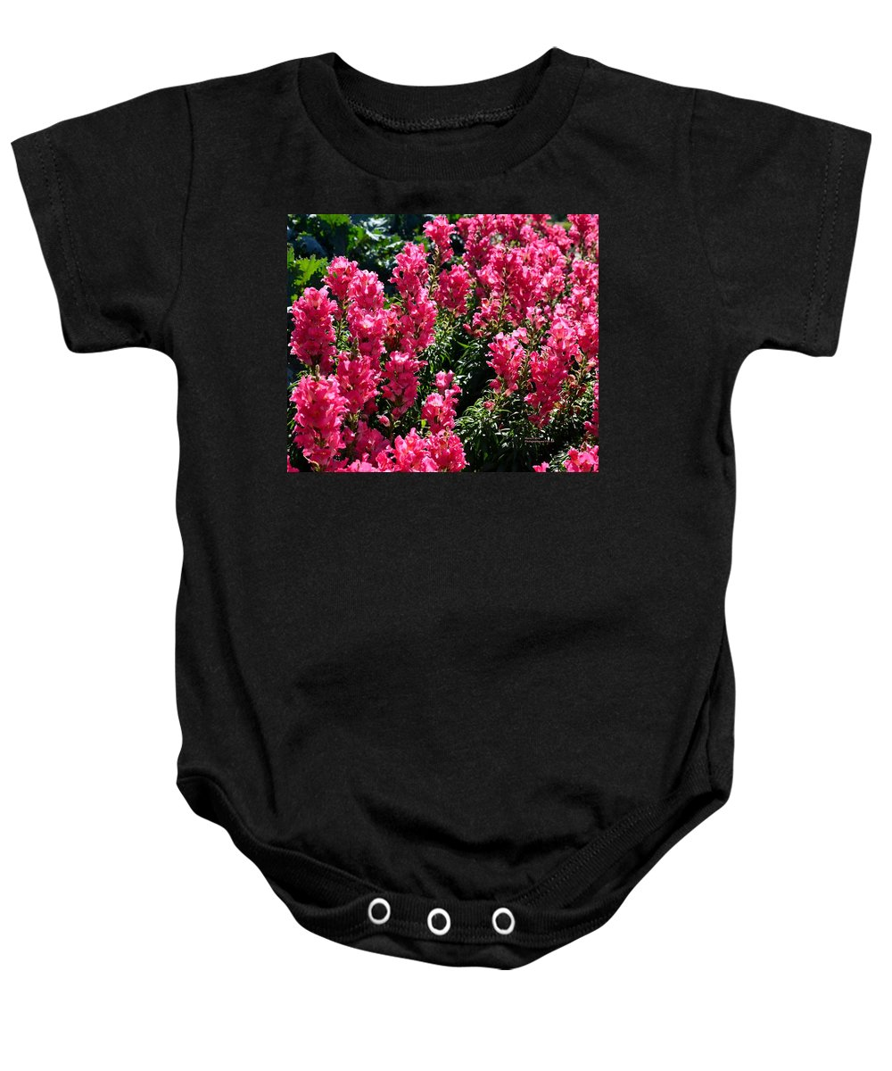 Flowers Baby Onesie featuring the photograph Fiery Pink by Maria Urso
