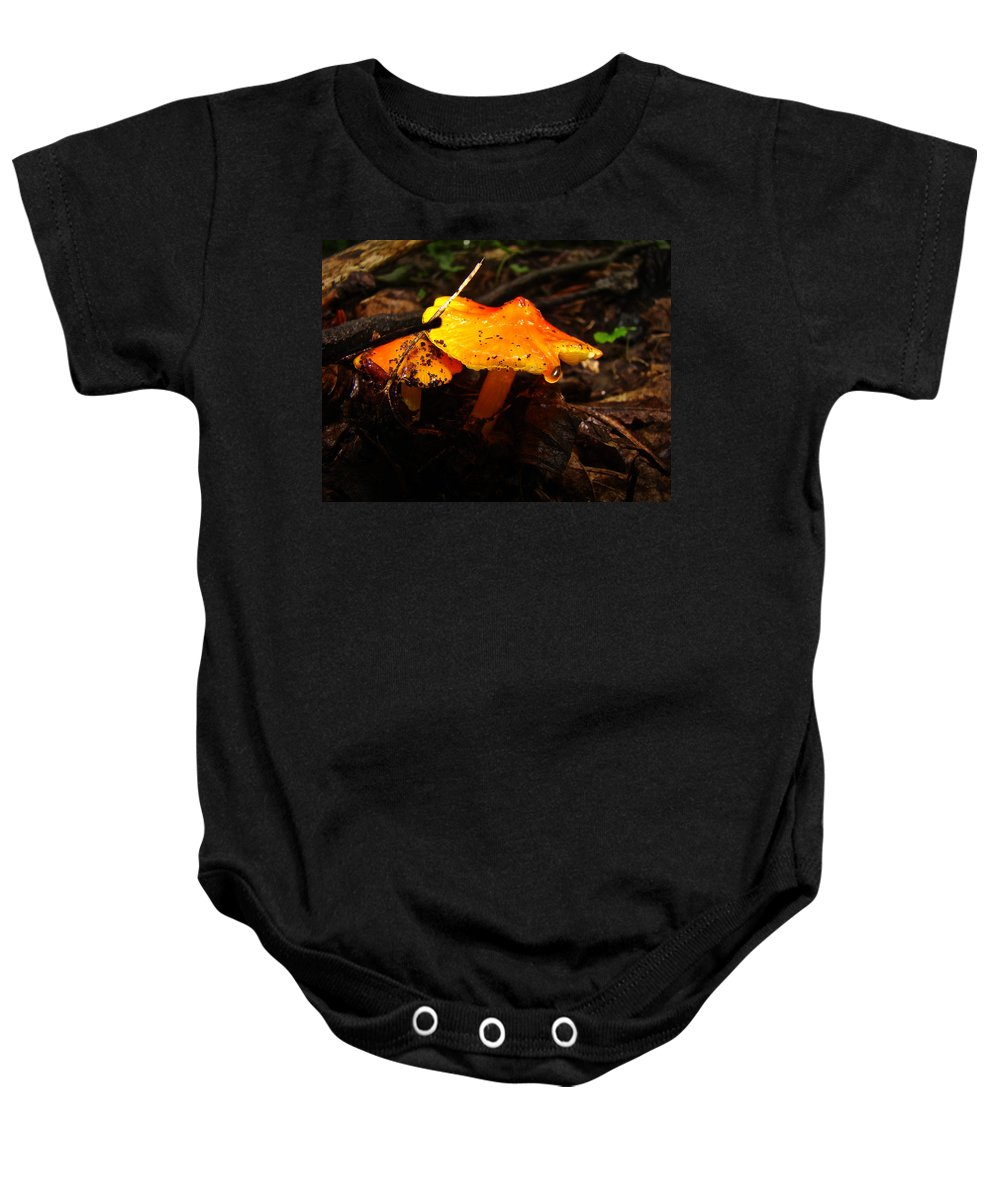 Mushroom Baby Onesie featuring the photograph Fire In The Forest - Hygrocybe Cuspidata by Mother Nature