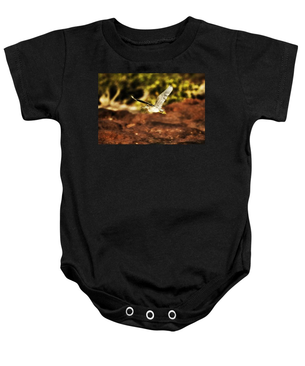 Flight Baby Onesie featuring the photograph Flight Of The Heron by Douglas Barnard