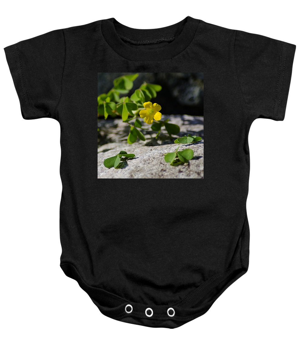 Flower Baby Onesie featuring the photograph Flower And Dancing Clover by LeeAnn McLaneGoetz McLaneGoetzStudioLLCcom