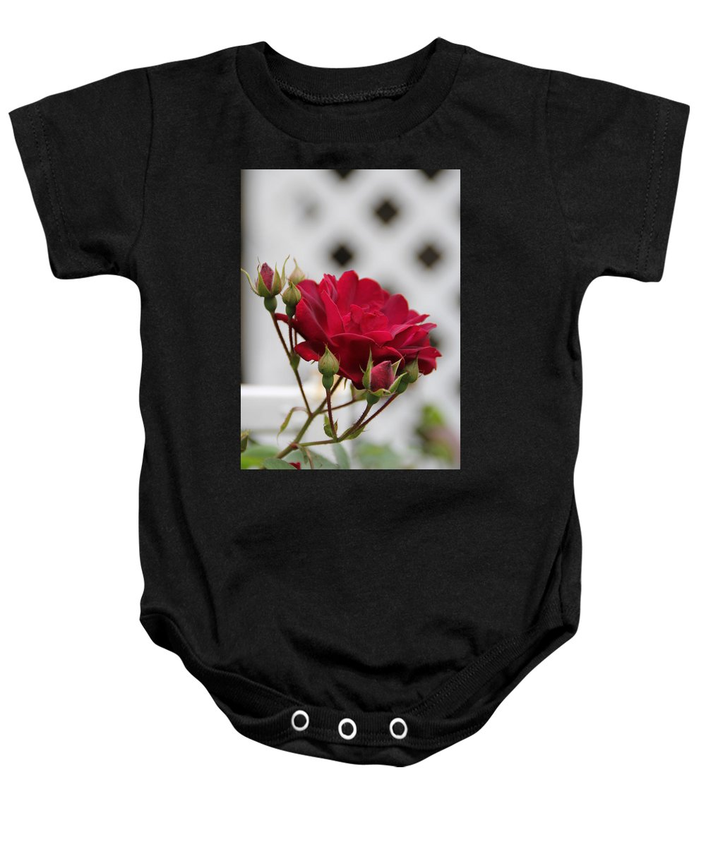 Flower Baby Onesie featuring the photograph Flower In The Light by Edward Gallegos