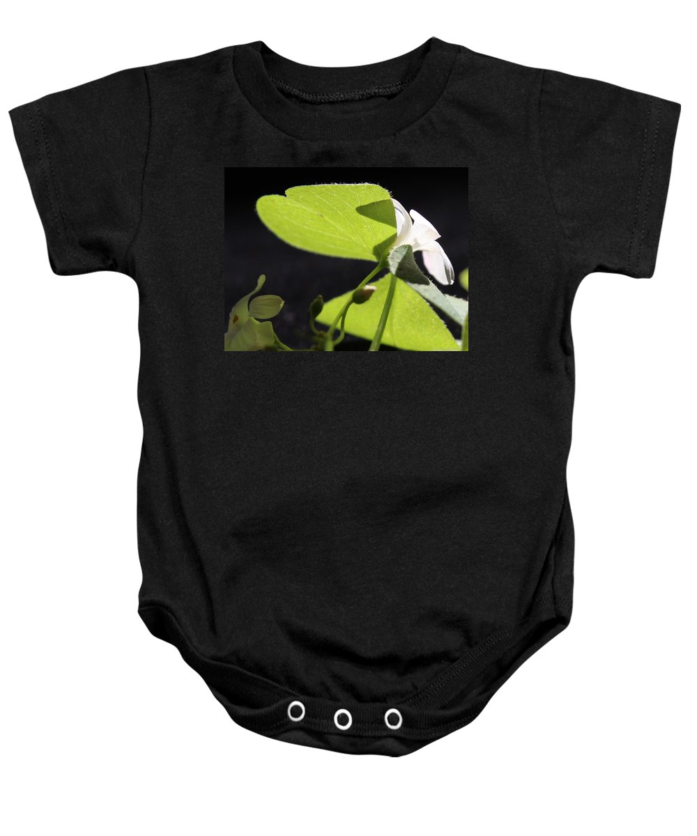 Light Baby Onesie featuring the photograph Following The Light by Kume Bryant