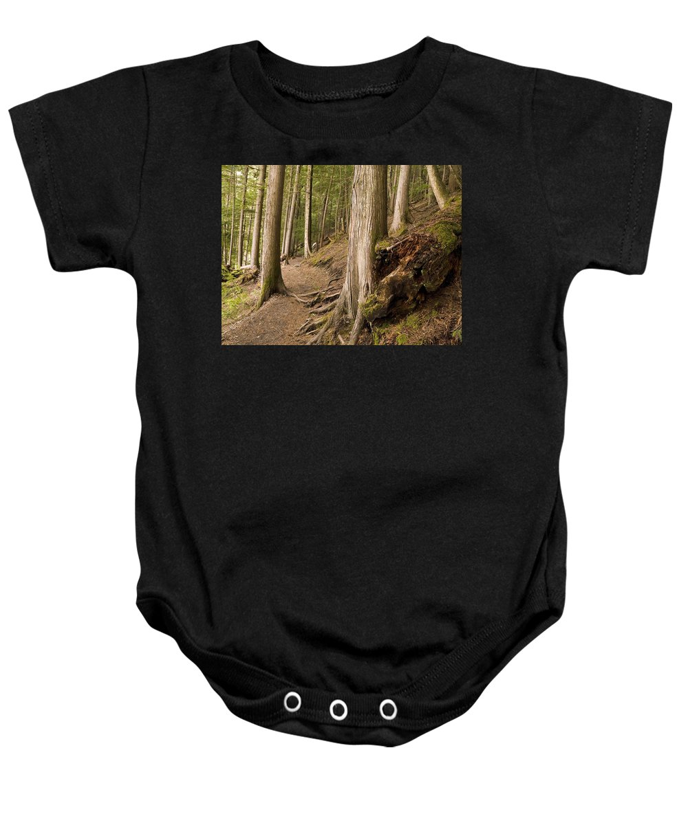Canada Baby Onesie featuring the photograph Forest Pathway, Whistler, British by Keith Levit