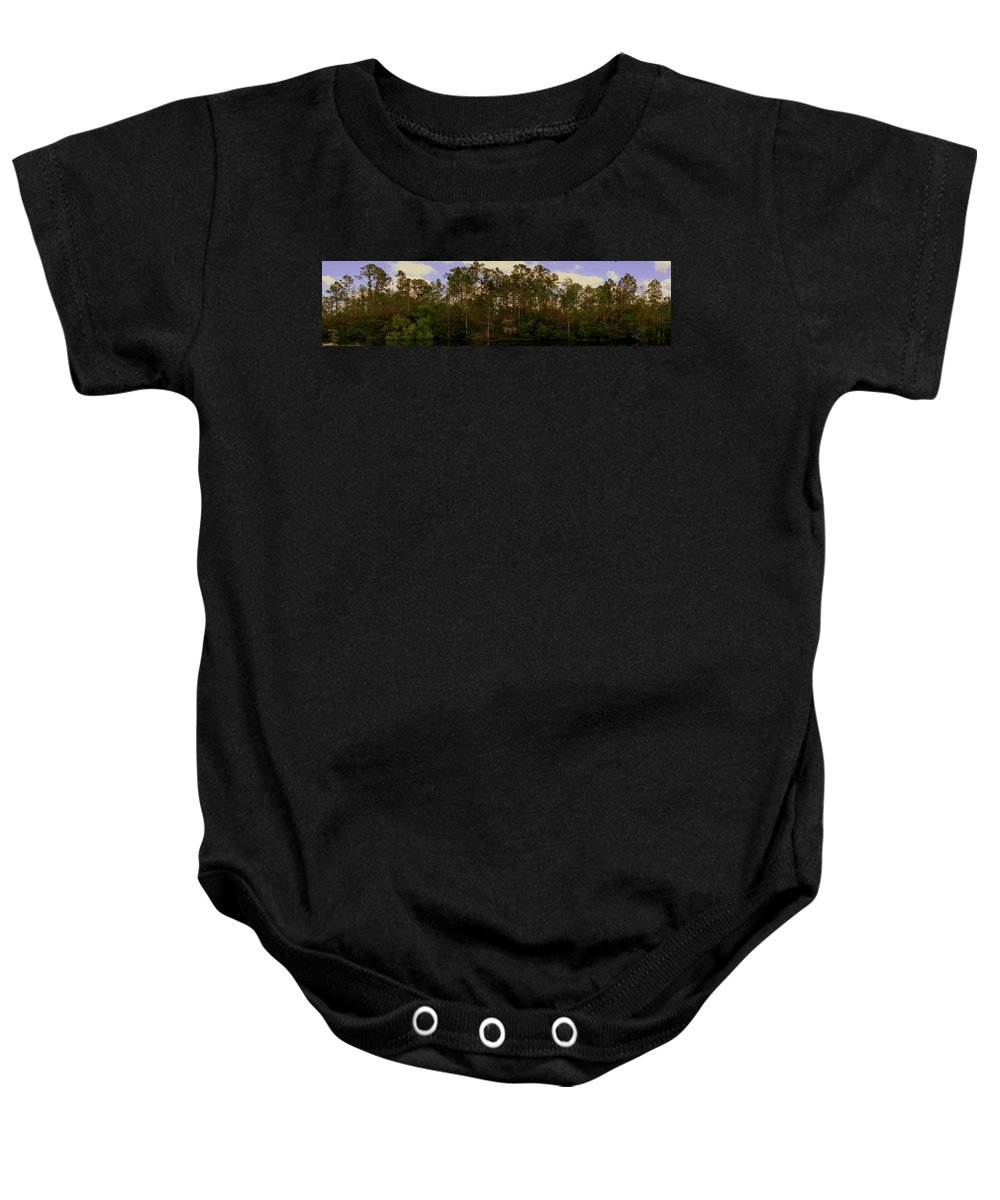 Gator Country Baby Onesie featuring the photograph Gator Country by Ed Smith