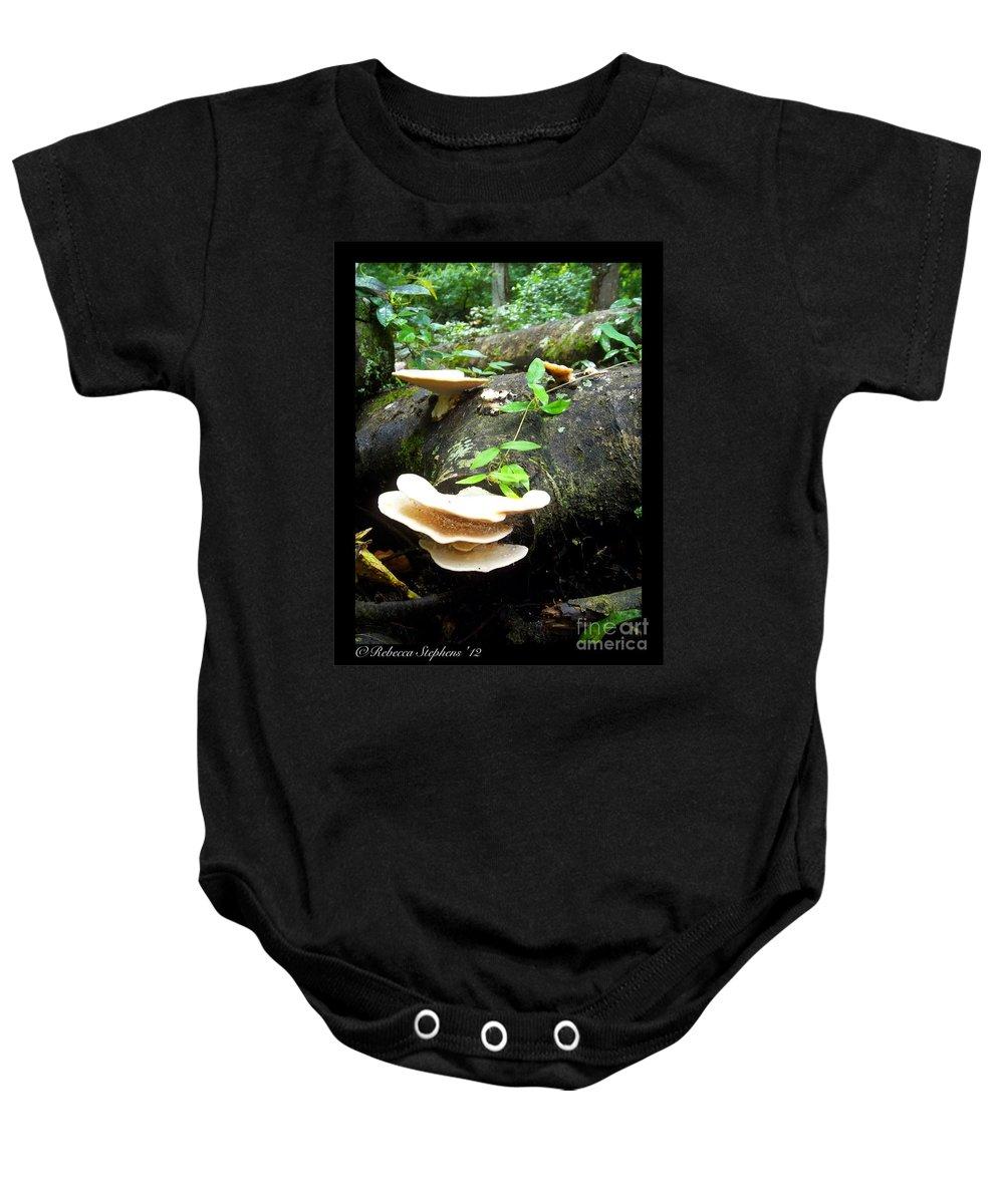 Ichetucknee State Park Baby Onesie featuring the photograph Geisha's Fan by Rebecca Stephens