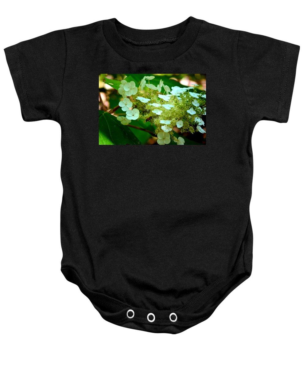 Bee Baby Onesie featuring the photograph Going In For The Sweet Stuff by Maria Urso