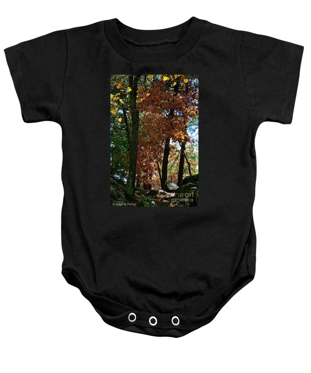 Landscape Baby Onesie featuring the photograph Golden Oak by Susan Herber