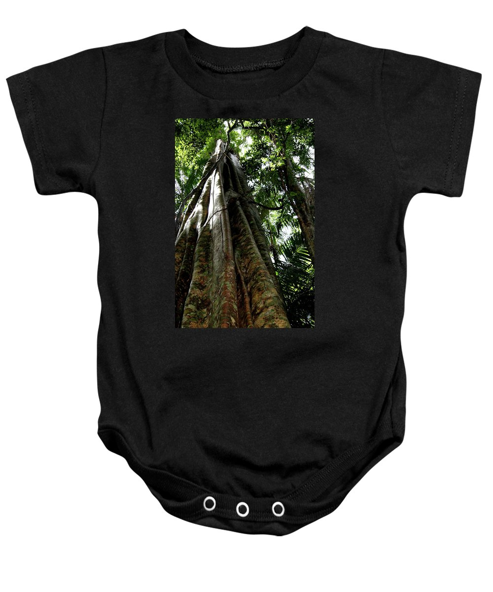 Old Trees Baby Onesie featuring the photograph Grand Old Lady by Karen Elzinga