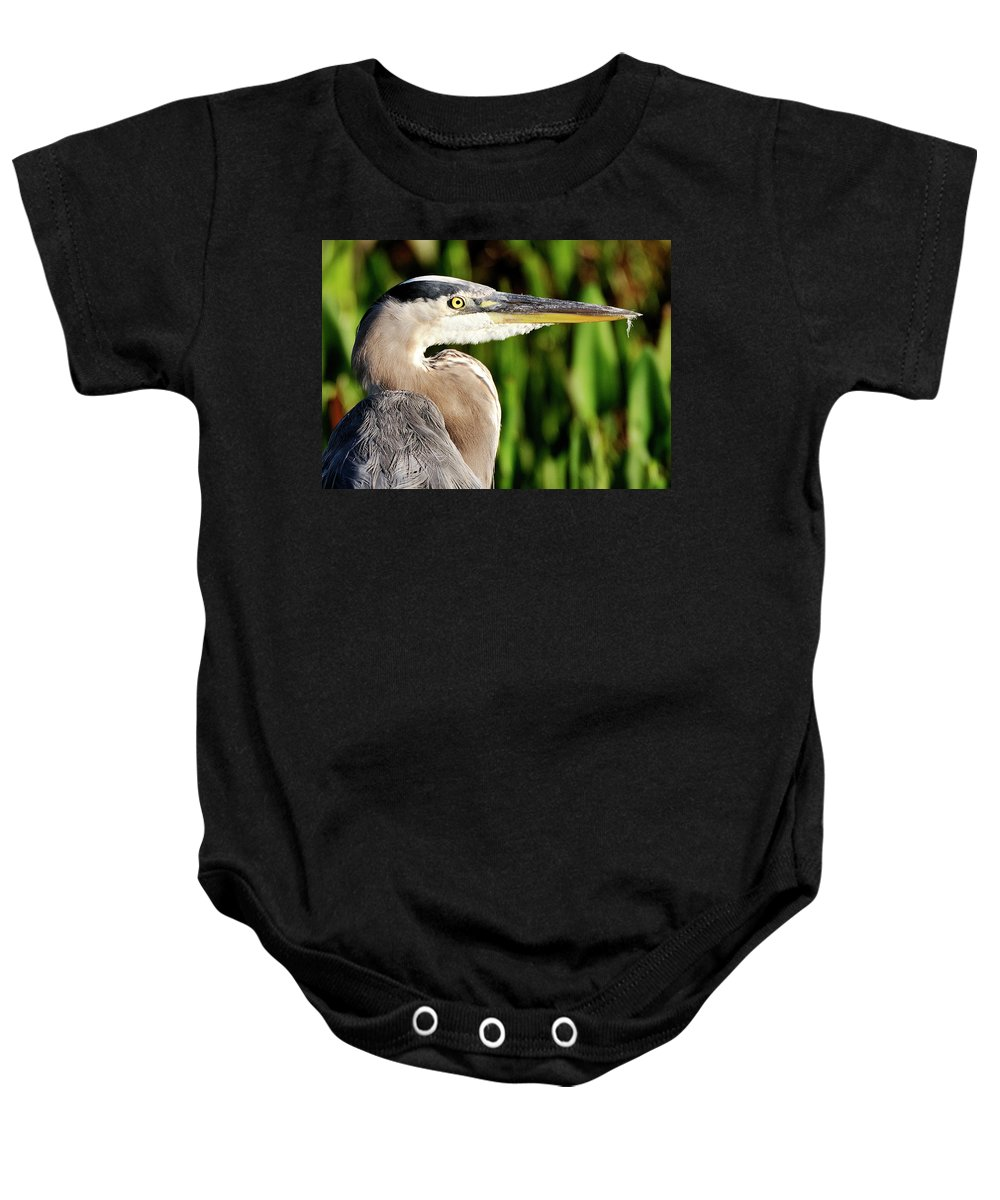 Great Baby Onesie featuring the photograph Great Blue Heron Portrait by Bill Dodsworth