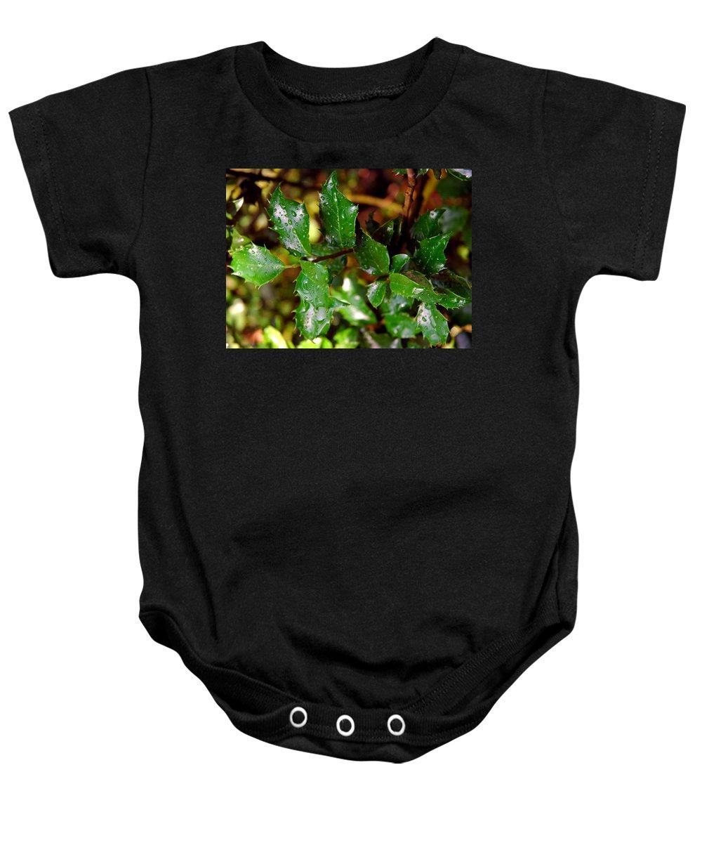 Usa Baby Onesie featuring the photograph Holly Daze Dew Drops by LeeAnn McLaneGoetz McLaneGoetzStudioLLCcom