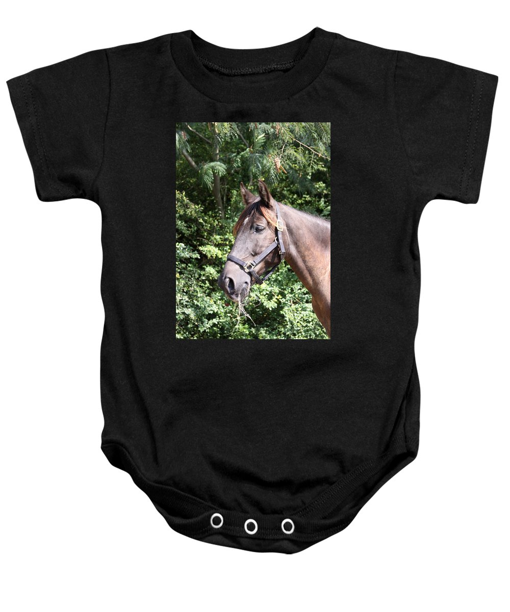 Horse Baby Onesie featuring the photograph Horse At Mule Day In Benson by Travis Truelove