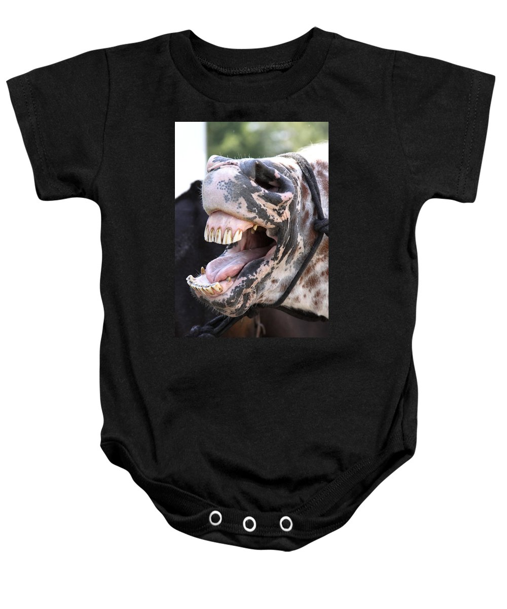 Horses Baby Onesie featuring the photograph Horse Humor by Travis Truelove