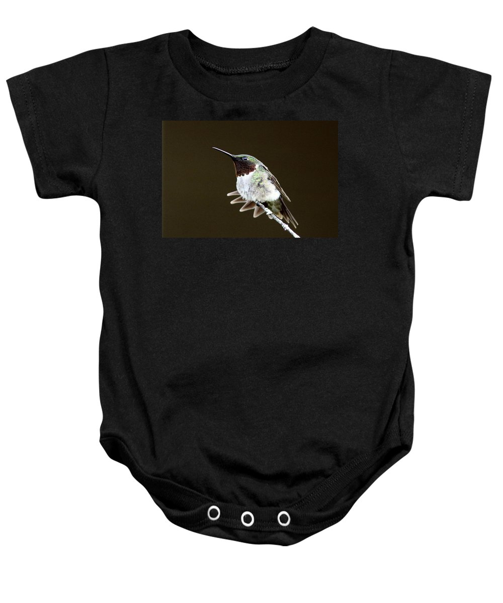Hummingbird Baby Onesie featuring the photograph Hummingbird - Wide Tail by Travis Truelove