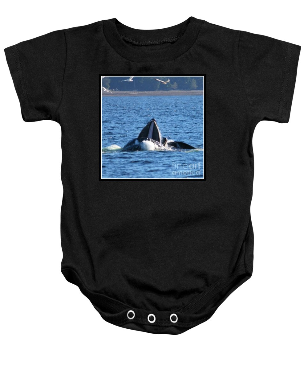 Whale Baby Onesie featuring the photograph Humpback Whale by Pamela Walrath