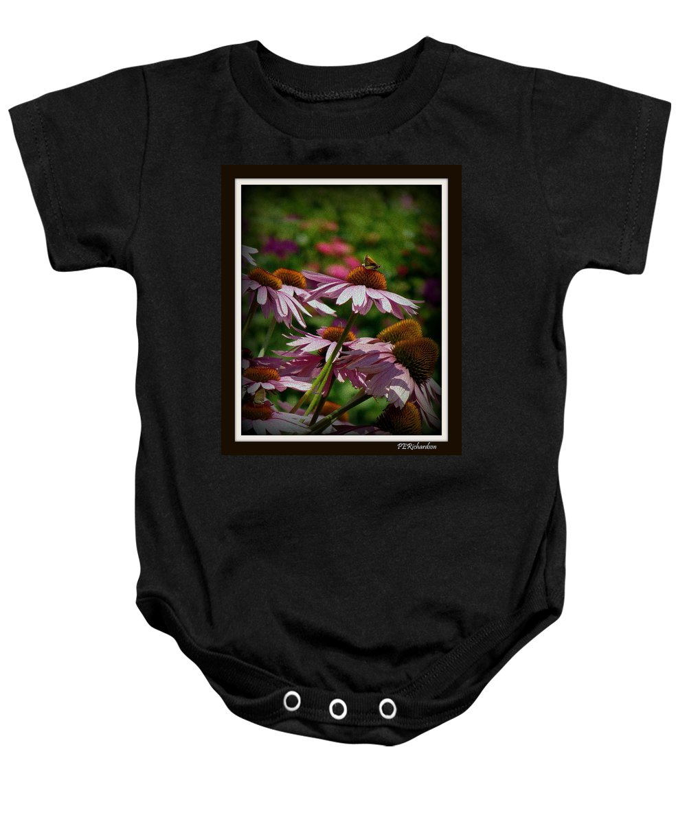 Purple Coneflower Baby Onesie featuring the photograph Interlude by Priscilla Richardson