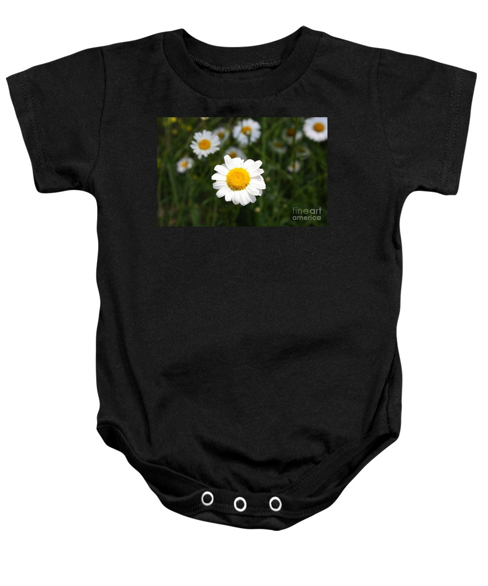 Daisy Baby Onesie featuring the photograph Isn't That A Daisy by Tony Cooper