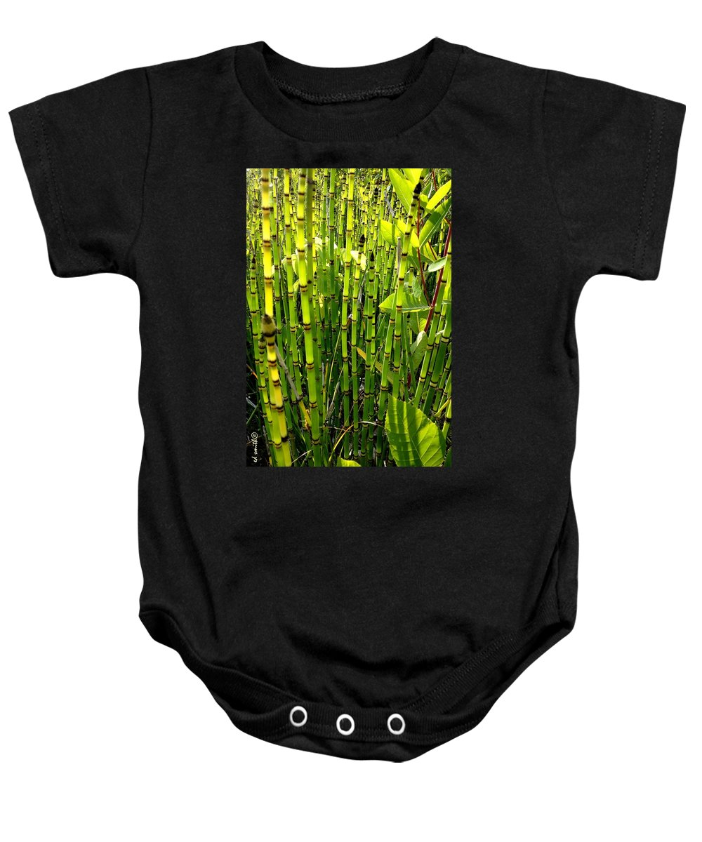 Jungle Fever Baby Onesie featuring the photograph Jungle Fever by Ed Smith