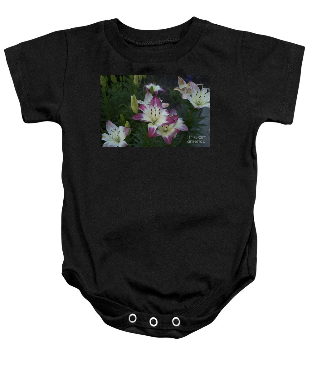 Lily Photographs Baby Onesie featuring the photograph Lillies by Catherine Conroy