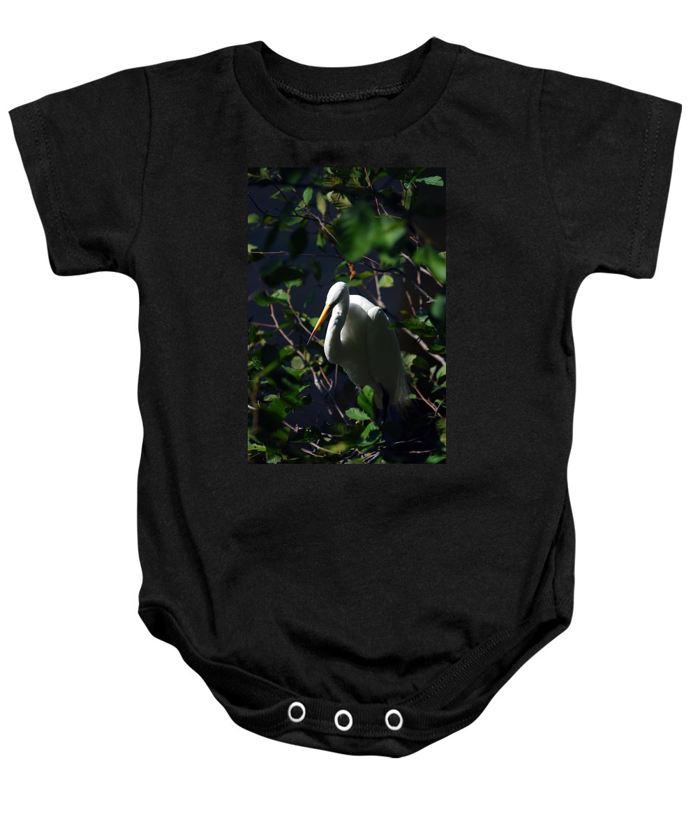 Great Egret Baby Onesie featuring the photograph Lost In Thought by Lori Tambakis