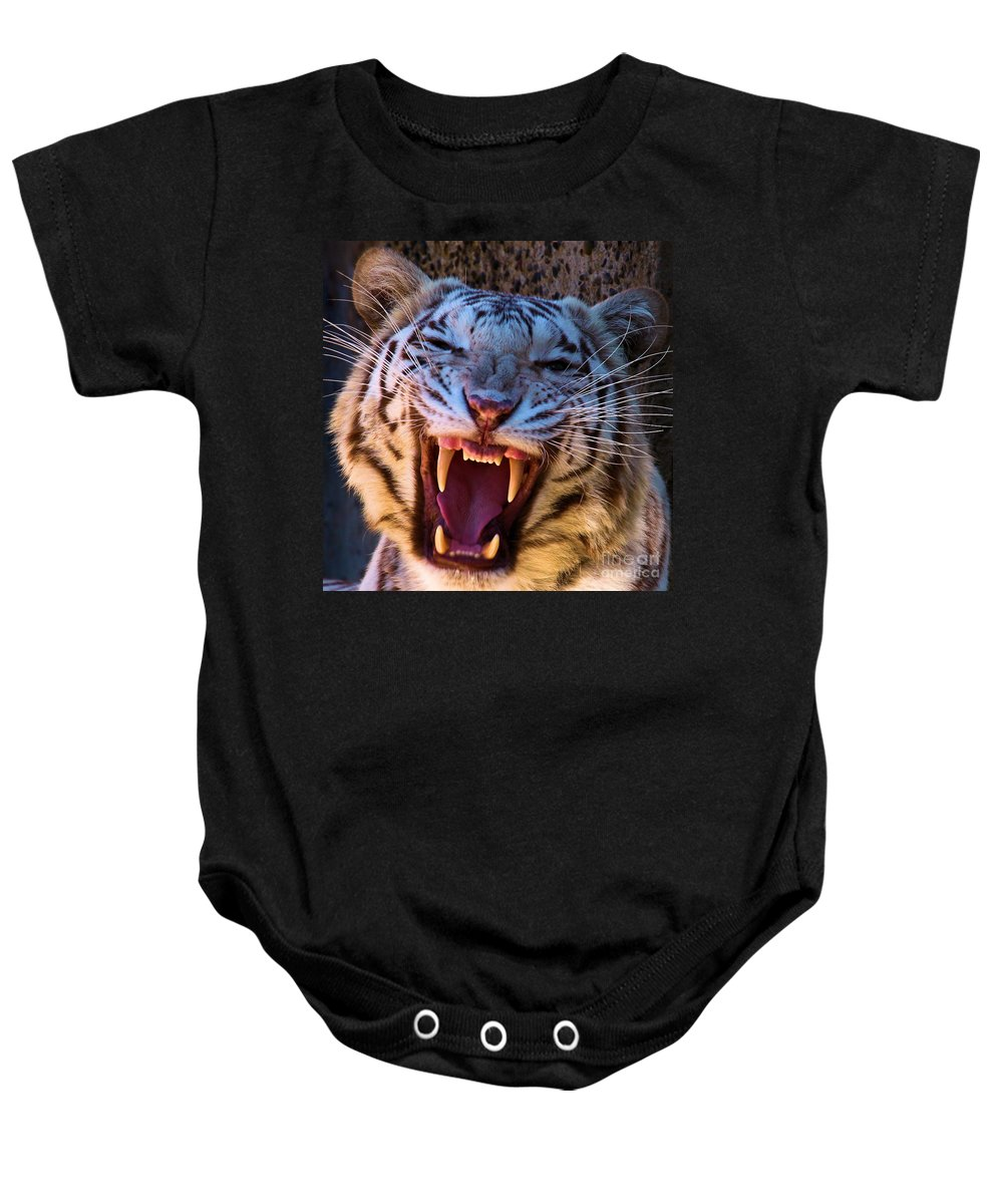 Bengal Tiger Baby Onesie featuring the photograph Meow by Adam Jewell