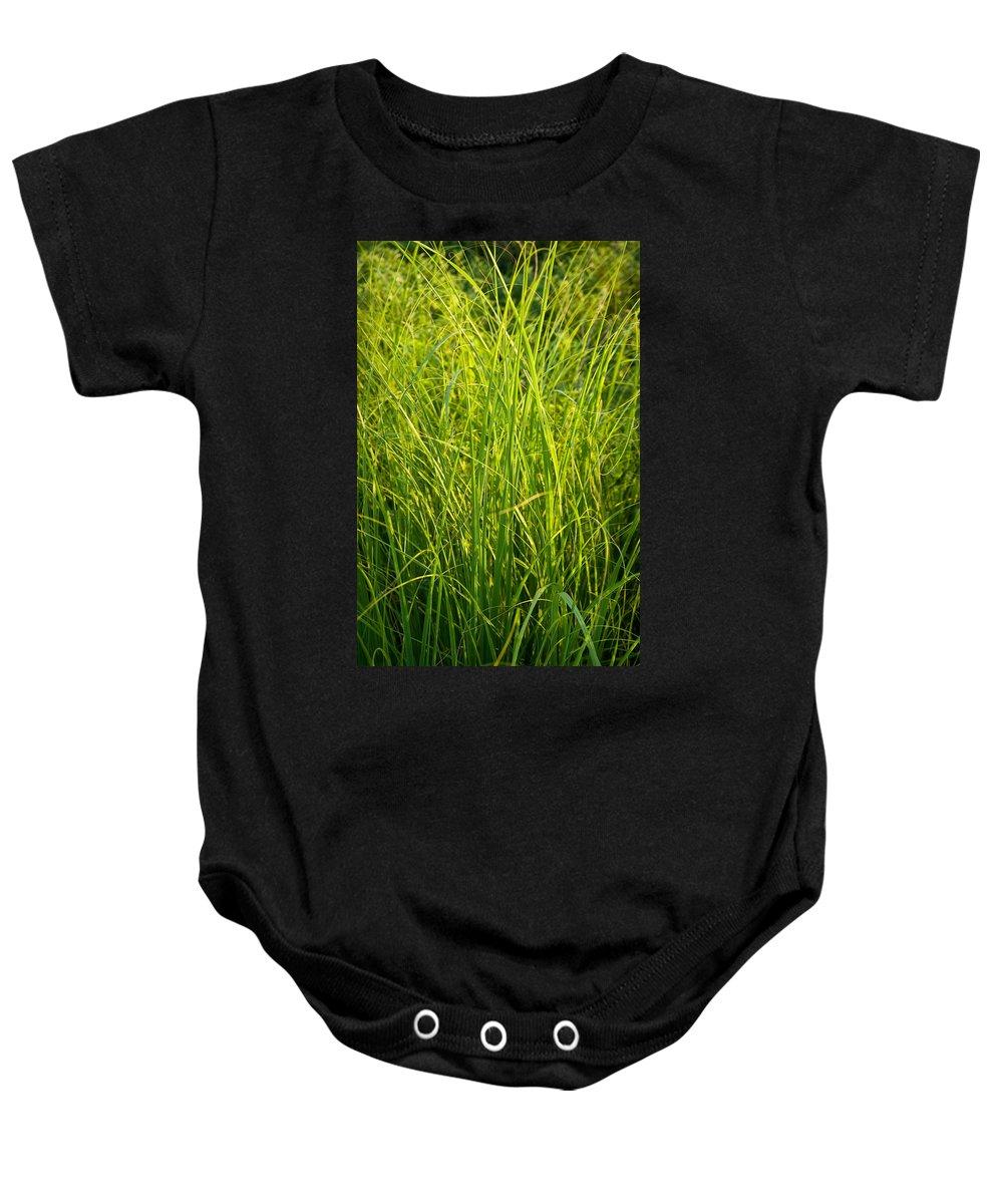 Prairie Baby Onesie featuring the photograph Midwest Prairie Grasses by Steve Gadomski