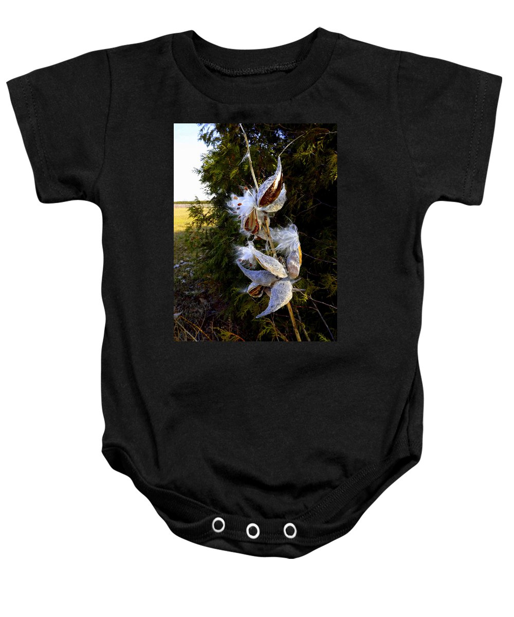 Milk Baby Onesie featuring the photograph Milkweed Breeze by Shelley Blair