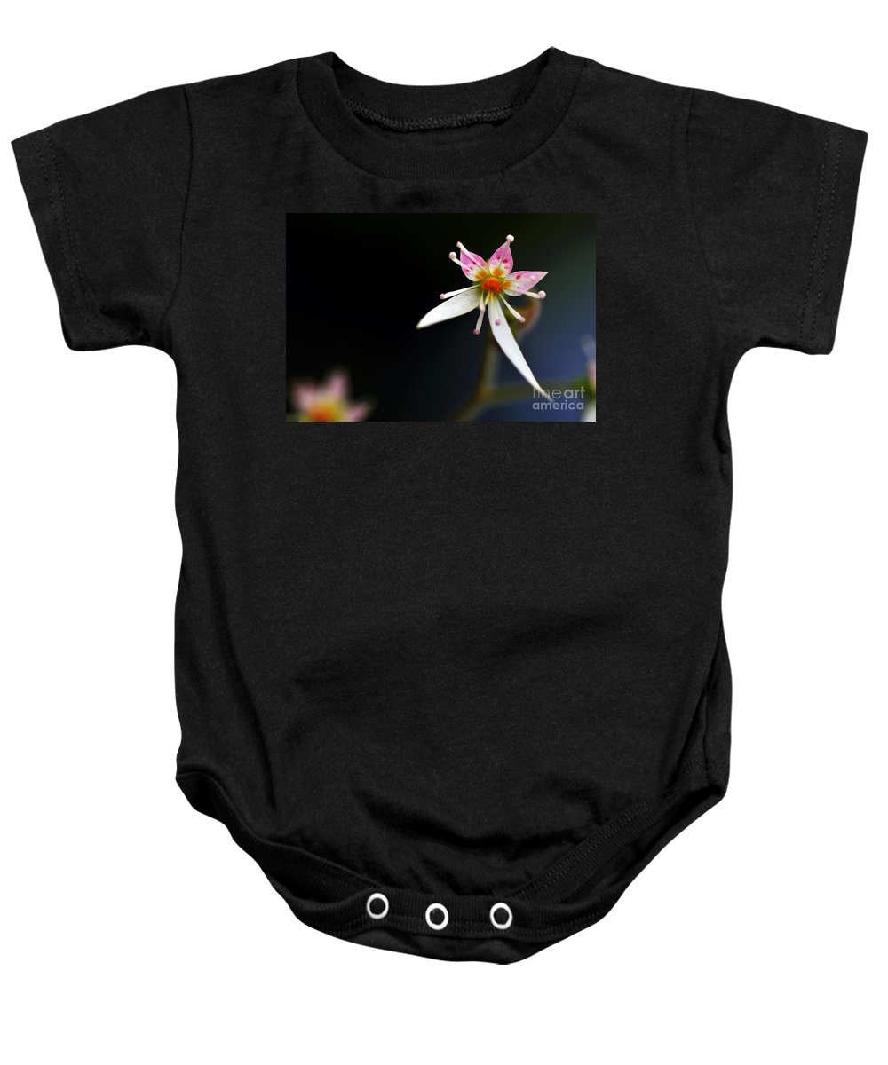 Photography Baby Onesie featuring the photograph Mini Cactus Flower by Kaye Menner