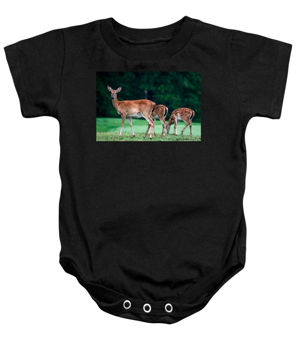 3 Deer Baby Onesie featuring the photograph Mom With Twins by Sally Weigand