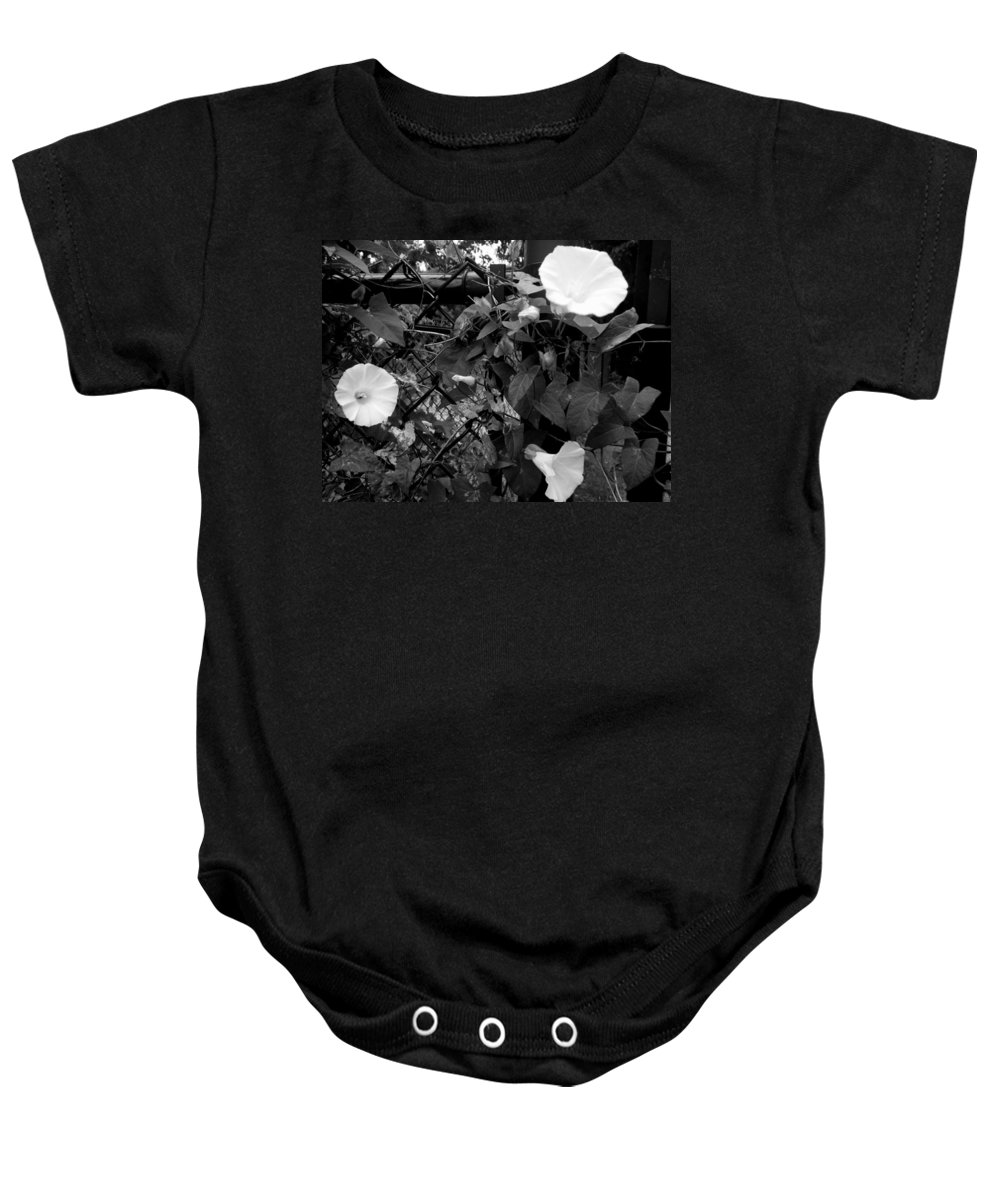 Landscapes Baby Onesie featuring the photograph Morning Glorys On A Fence by April Patterson
