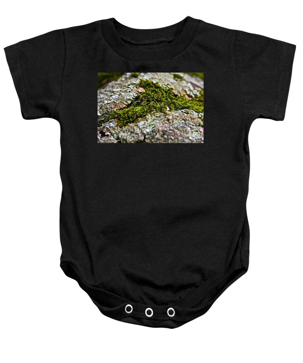Landscape Baby Onesie featuring the photograph Moss In The Middle by Susan Herber
