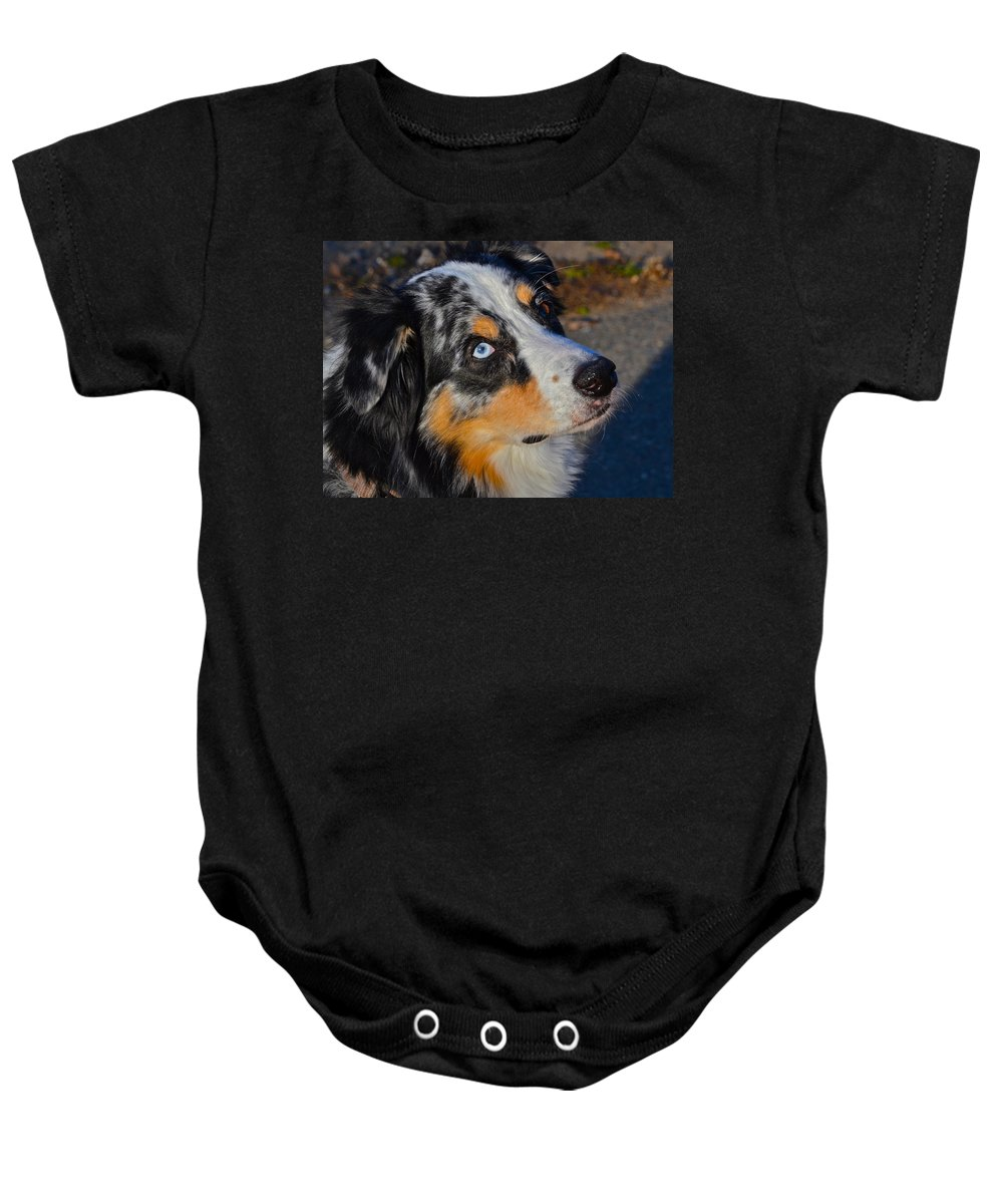 Dog Photographs Baby Onesie featuring the photograph My Brown Eyes Blue by Bill Owen