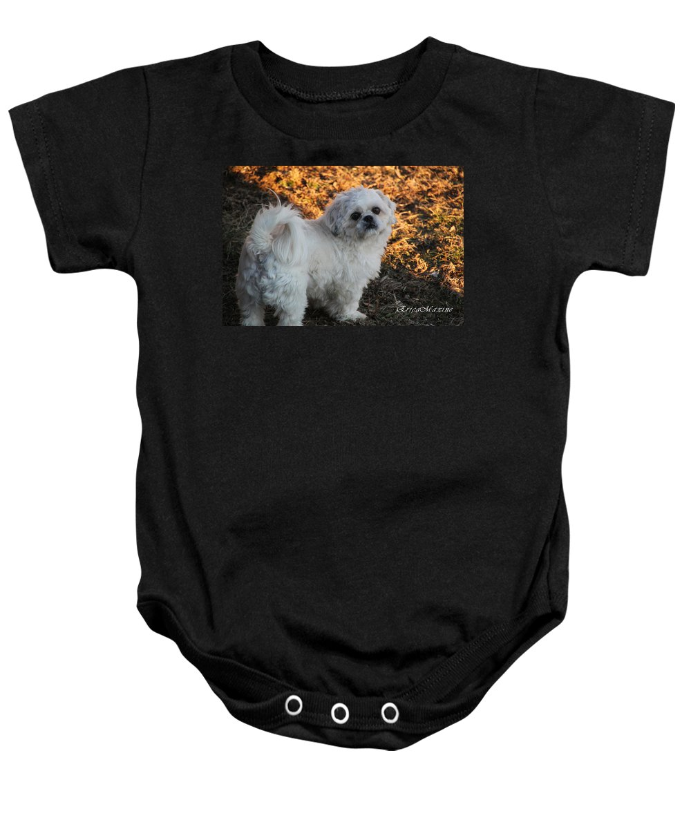 Dog Baby Onesie featuring the photograph My Bubba by Ericamaxine Price