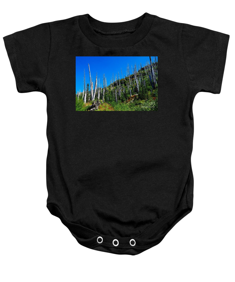 Trees Baby Onesie featuring the photograph Near The End Of The Blow Out by Jeff Swan